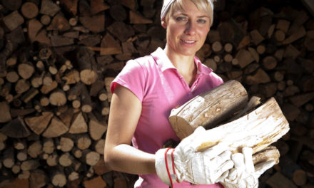 Holzlager bauen mit Anleitung