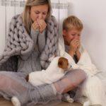 Heizkörper wird nicht warm – Lösungen und Tipps